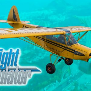 Microsoft Flight Simulator | An overview