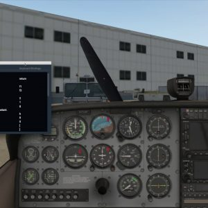 X-Plane 11 keyboard shortcuts & ground handling windows