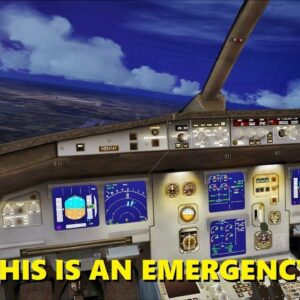 """Declaring Emergency in a """"SERIOUS"""" Flight Sim Session (Multiplayer)"""