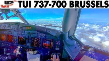 Great Pilot Angle BOEING 737 Approach & Landing at Brussels🇧🇪